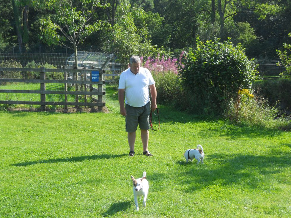 Dog friendly at Riverside Camping & Caravan Park, South Molton