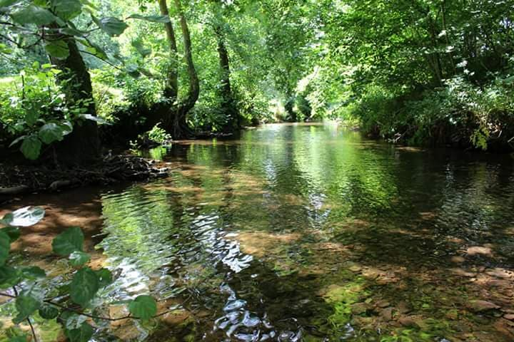 River at Riverside Camping Park, South Molton
