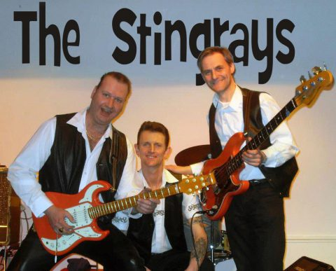 The Stingrays